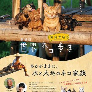 劇場版 岩合光昭の世界ネコ歩き あるがままに、水と大地のネコ家族(ネタバレ)