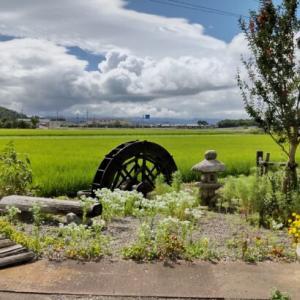 「BIWA-TEKU(ビワテク)」で「長浜市 戦国武将浅井家ゆかりの地コース」を歩いてみた2