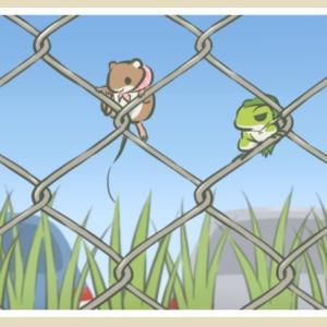●台湾新聞●旅かえる。旅行青蛙。なぜ爆発的人気?心理学者が考える4つの理由。【その四】