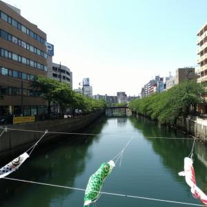 新緑の大岡川