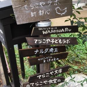 セラピールームkitokaの看板と「てらこや新聞」