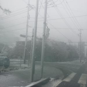 雪凄かった。