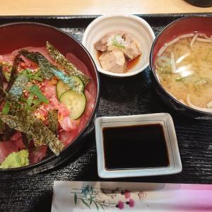 東寺近隣マグロ専門店でお昼ご飯(^^♪再来