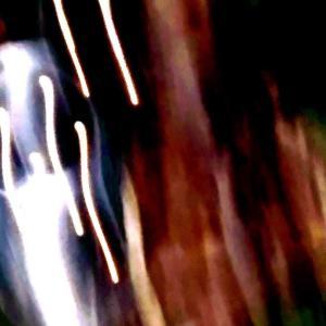 変身素粒子ハムレット…ある日の話(Collage Gang)
