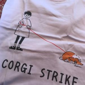 Tシャツが好き〜パート2