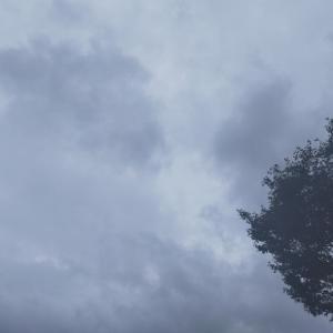 雨の7月Aクラス月例(*´Д`)
