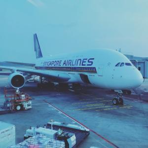 シンガポール航空のパイロットの年収は?パイロット不足が原因で世界で引き抜き合戦に!