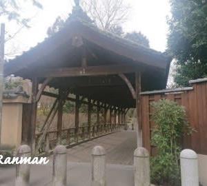 東福寺 *京都一人観光*