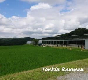 西山牧場 *兵庫県 三木市吉川町*
