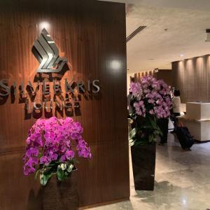 シンガポール チャンギ国際空港「シルバークリスラウンジ」はビジネスクラス利用限定!シャワー、食事をレビュー