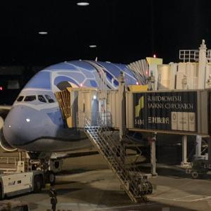 ANAハワイ プレミアムエコノミーA380搭乗記!機内食、座席、アメニティはどうだった?