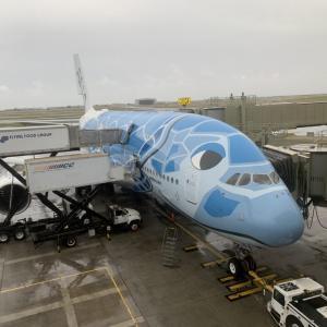 【A380フライングホヌ】ANAビジネスクラス搭乗記ブログ(ホノルル→成田)機内食、座席をレビュー