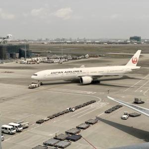FLY ON プログラムとは?JALの上級会員ステイタスサービスのメリットや特典、JGC取得方法は?