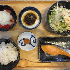 焼魚(鮭)の献立(2020年8月2日の朝ごはん) ダスキンのスポンジ