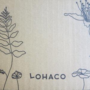 LOHACO(ロハコ)でパルスイート、DEAN&DELUCAクーラーバッグLサイズ