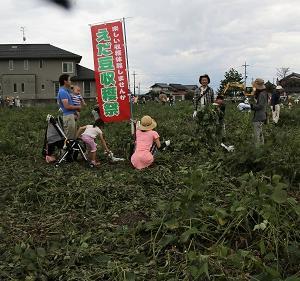 枝豆収穫祭り(東近江市池之尻 )  2017.10.8
