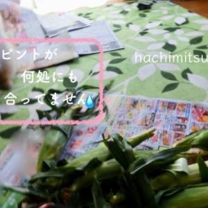 ■日曜日のドッグランとトウモロコシ
