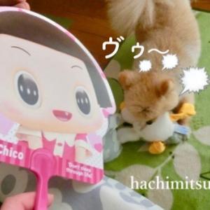 ■チコちゃん