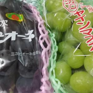 葡萄✩.*˚