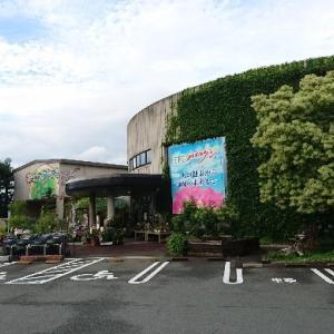 【津市】赤塚植物園に行ってきました【多肉植物色々揃います】