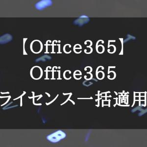 【Office365】Office365ライセンスの一括適用