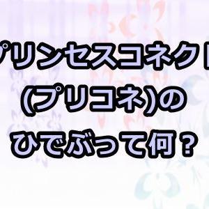 プリンセスコネクト(プリコネ)のひでぶって何?千葉繁さんの声が良い!