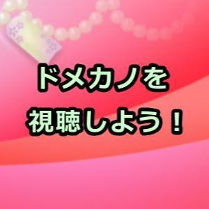 ドメカノ規制なし解除の袋とじ版アニメ動画を全話フル視聴できる?すごい…