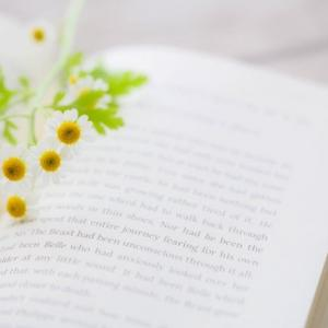 本が好きになる読みかた。不登校ひきこもりに価値観の広がりを