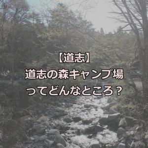 【道志】道志の森キャンプ場ってどんなところ?