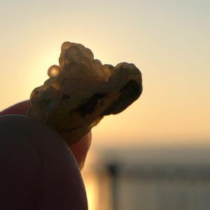 海の石いろいろ【青森・今別】