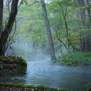 朝霧漂う紅葉の…奥入瀬渓流♡
