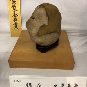 今年もいろんな錦石に会えました♪青森県にしき石展示会