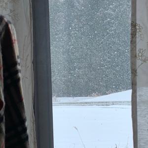 寒い๐·°(৹˃̵﹏˂̵৹)°·๐凍る