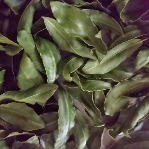 フリマで無農薬 その上安価で量も多くお得(^.^)