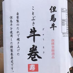 城崎にて(城崎から)