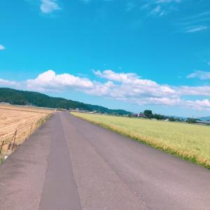 自転車で40km