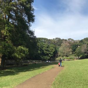 土曜日*根岸森林公園