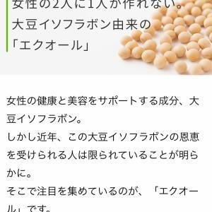 更年期症状を改善したい…漢方薬と漢方食材、サプリメントのこと。