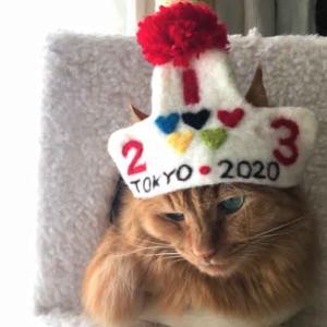 ■ 4年に一度 うるう日 オリンピック帽