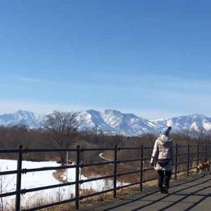 ■ 十勝 残雪の山