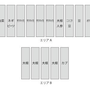 畑レイアウト(2018年秋冬)