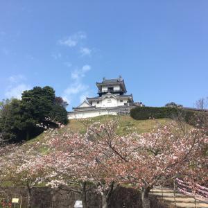 【紹介】天竜浜名湖鉄道に乗車しながら桜並木を堪能