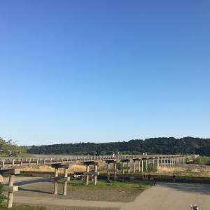 【紹介】世界一の長さを誇る木造歩道橋「蓬莱橋」