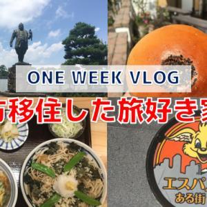 【VLOG】電車で行く静岡駅周辺散策#30