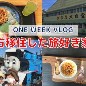 【VLOG】新金谷駅までトーマスを見に行ったよ!#31