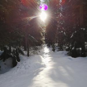 雪のスピリチュアルな意味★ワクワク大事な小旅行へGO!