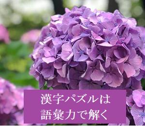 漢字パズルは語彙力で解く***6月19日