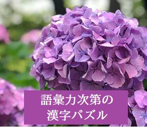 語彙力次第の漢字パズル***7月9日