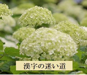 漢字の迷い道***6月25日