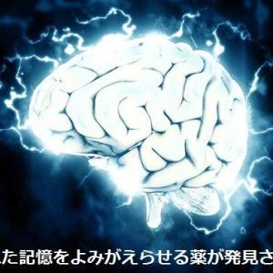 忘れた記憶をよみがえらせる薬が発見される(日本研究)